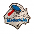 Biologia (aranha)